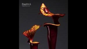 Daphni - Fly Away